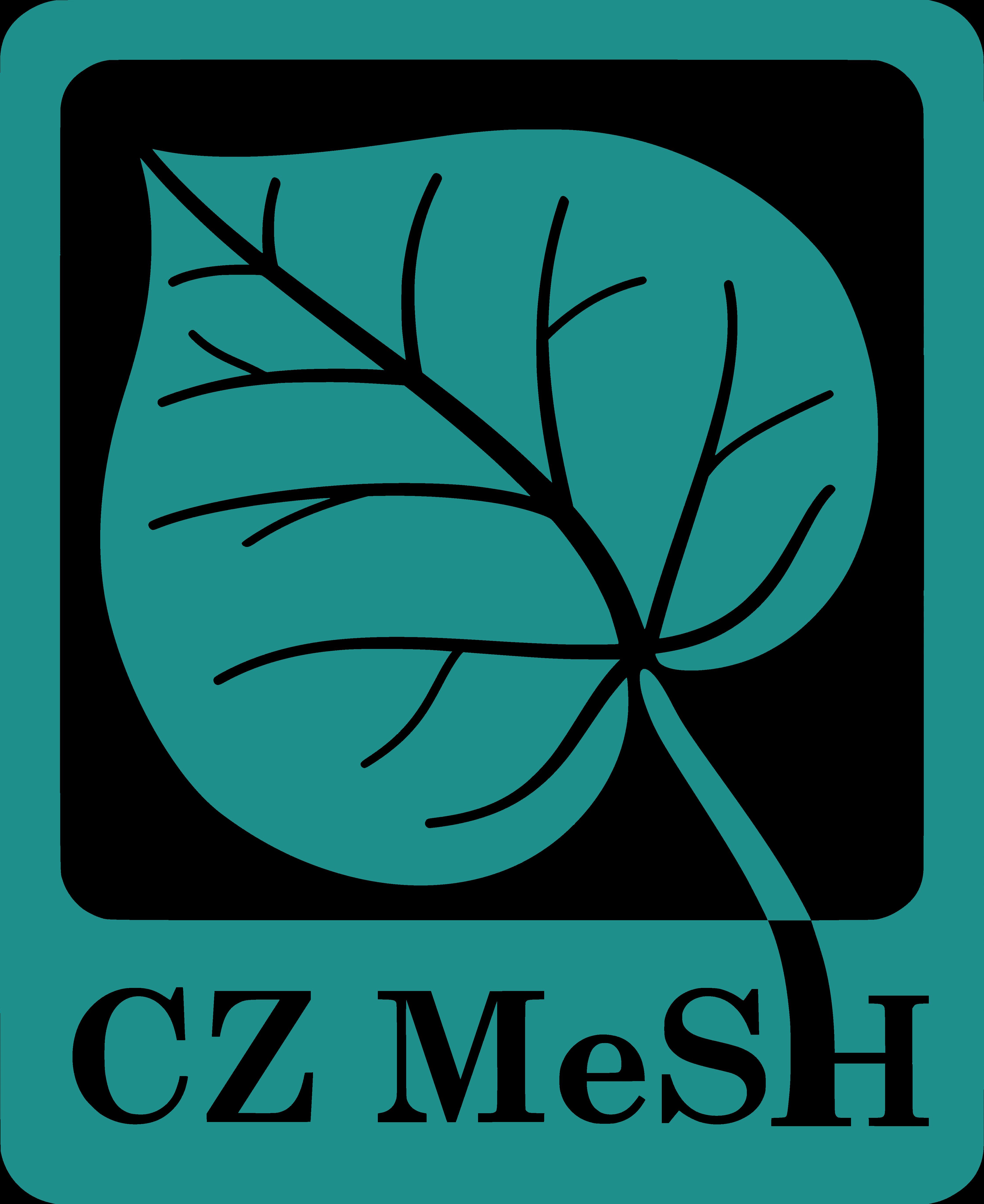 Mesh_logo_klara_2016
